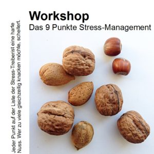Workshop 9 Punkte Stress-Management