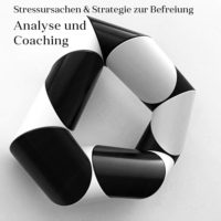 Stressursache_Analyse_Coaching_web